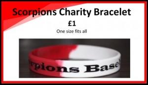 hull_scorpions-charity-bracelets-604x270